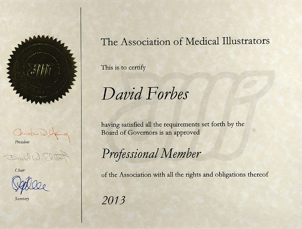 The Association of Medical Illustrators Professional