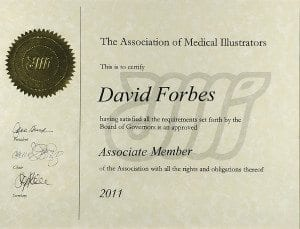 Association Medical Illustrators Associate Member