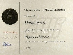 Association Medical Illustrators Professional Member